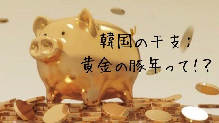 韓国の干支:黄金の豚年って!?